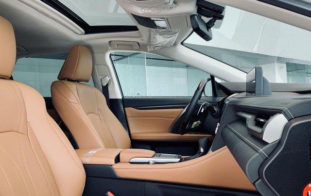 [Siêu ưu đãi] Lexus RX300 năm 2020 new giá tốt nhất tại Miền Bắc, bảo hành vàng cùng hàng loạt phụ kiện chính hãng6