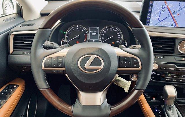 [Siêu ưu đãi] Lexus RX300 năm 2020 new giá tốt nhất tại Miền Bắc, bảo hành vàng cùng hàng loạt phụ kiện chính hãng8