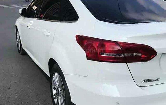 Xe Ford Focus Titatium 1.5L Ecoboost sản xuất 2016, màu trắng3