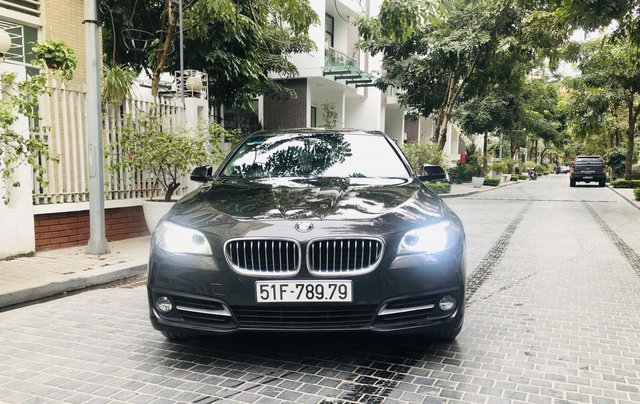 BMW 520i Màu tobaco độc lạ rất mới0