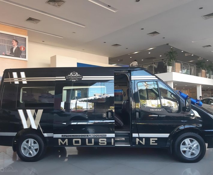 Ford Transit Limousine năm 20190