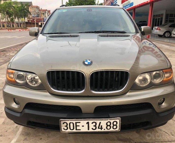 Cần bán gấp BMW X5 đời 2004, màu nâu, 260 triệu0