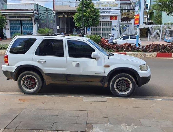 Bán Ford Escape năm sản xuất 2004, màu trắng, xe nhập còn mới0