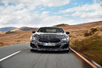 BMW M850i xDrive Coupe hé lộ thông số chi tiết, công suất lên đến 523 mã lực 1a