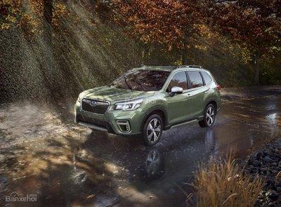 Đánh giá xe Subaru Forester 2019.