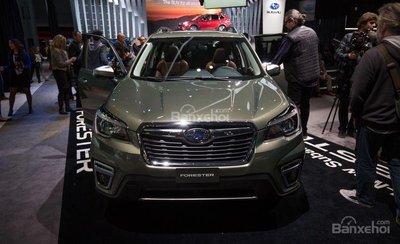 Subaru Forester 2019 mới.