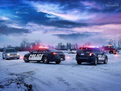 Chiêm ngưỡng Interceptor Utility - Siêu SUV truy đuổi tội phạm của Ford 2a