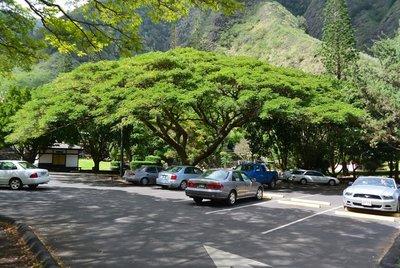 7 bí kíp chống nóng cho xe ô tô trong mùa hè nắng gắt 1.