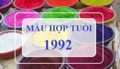 Tuổi Nhâm Thân 1992 mua xe màu gì?.