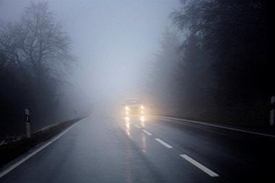 Đèn sương mù giúp tài xế nhận diện chướng ngại vật trên đường 1