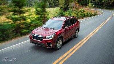 Subaru Forester 2019 tăng giá nhưng chất hơn - 1