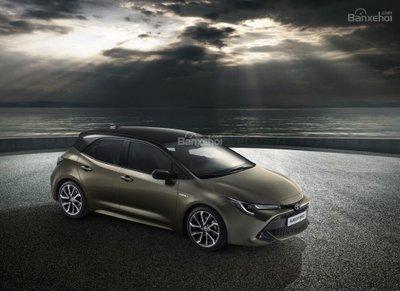 Auris đời mới sẽ đội lốt xe hot Toyota Corolla - 1