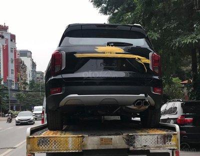 Hyundai Palisade 2019 bất ngờ về Việt Nam, SUV cỡ lớn có thêm lựa chọn   a1