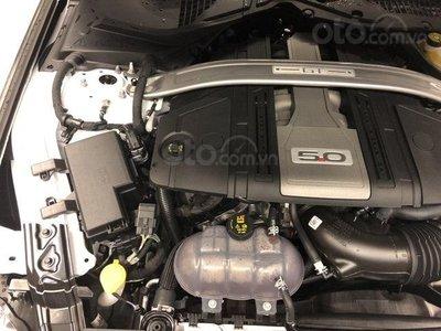 Ưu nhược điểm Ford Mustang 2019: GT dùng V8 cực cơ bắp