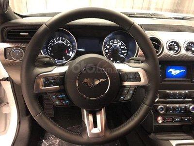 Ưu nhược điểm Ford Mustang 2019: Đồng hồ kỹ thuật số ấn tượng, có bản truyền thống