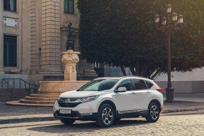 Honda CR-V 2019 màu trắng