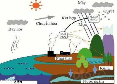 Tác hại của nước mưa đối với ô tô và phương án đối phó: Mưa cũng chứa chất bẩn
