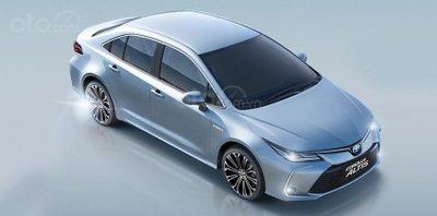 Những điều cần biết về Toyota Corolla Altis 2020