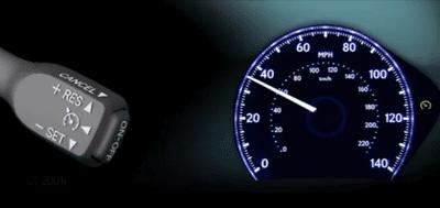 Dynamic Radar Cruise Control SET indicatorv