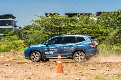 Hiện tượng đèn báo động không xảy ra trên Subaru Forester tại các thị trường khác.