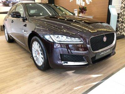 Khách mua Jaguar XF sẽ được tặng 1 năm bảo hiểm thân vỏ 1