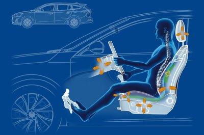 Ngồi đúng tư thế giúp người lái ô tô không bị đau lưng.