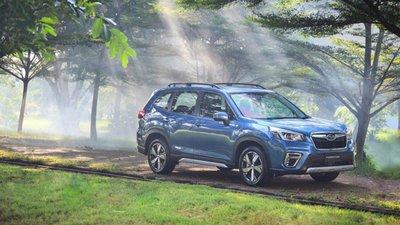 Subaru Forester giành được nhiều giải thưởng minh chứng cho sự an toàn.