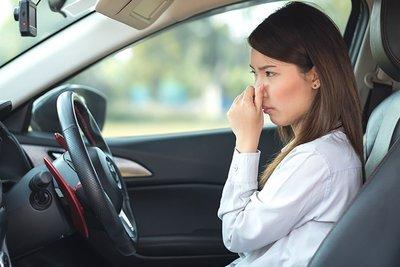 Nấm mốc có thể khiến xe có mùi khó chịu và gây mất thẩm mỹ.