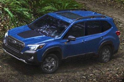 Subaru Forester Wilderness mới nhận được một loạt các nâng cấp để trở nên tốt hơn so với Forester tiêu chuẩn 1.